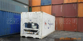 China Metal Used Reefer Container / 20 Foot Refrigerated Container supplier